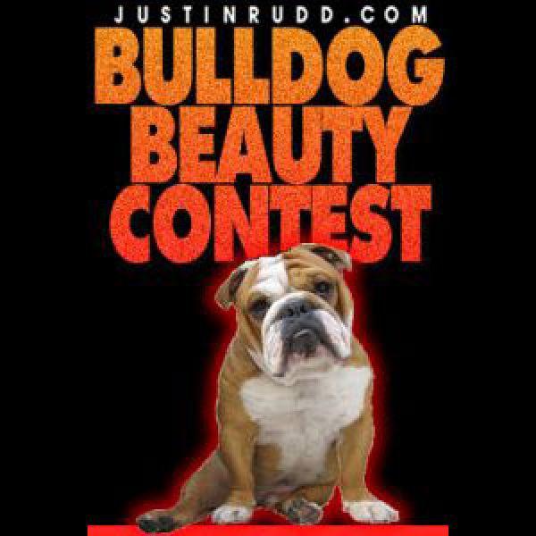 Bulldog-contest-2016